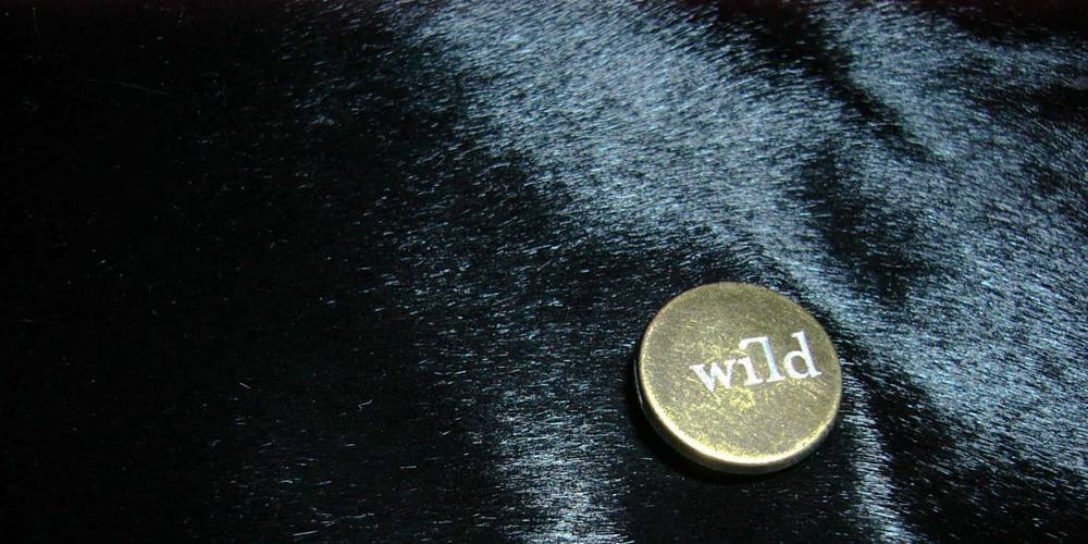 WILD poetic fur rebellion - high quality